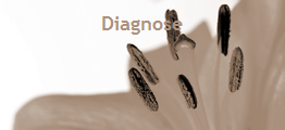 diagnose 120 sepia